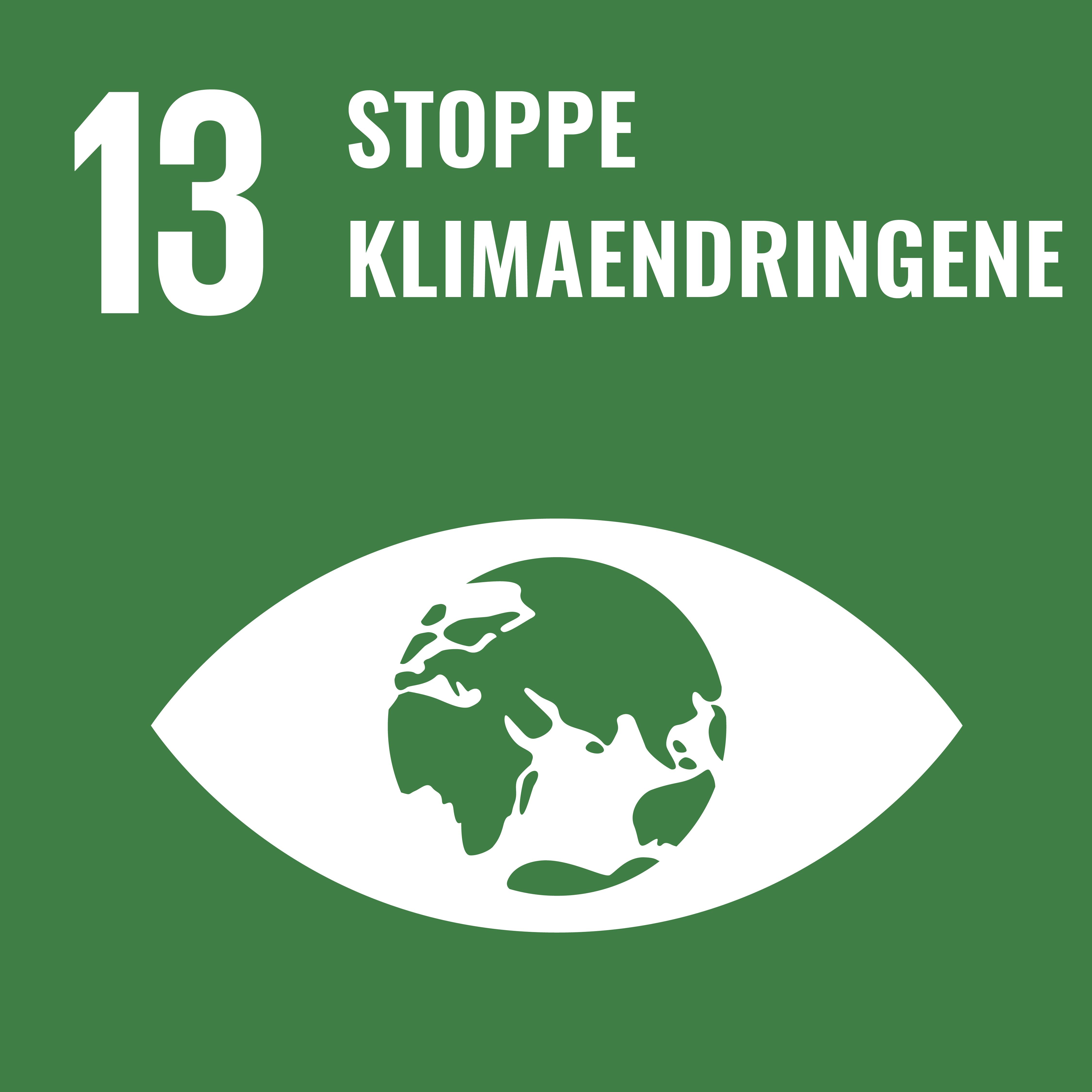 13 Stoppe klimaendringene